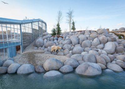4 Habitat IJsberen