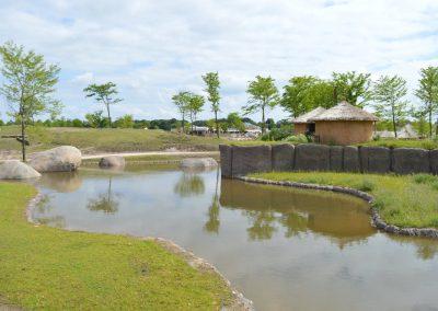 8 Savanne Drinkplaats met Hut